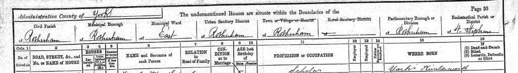 1891 census sample